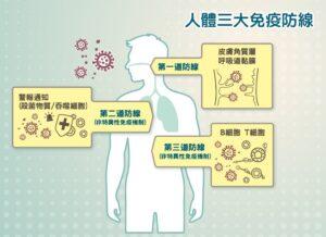 免疫三道防線